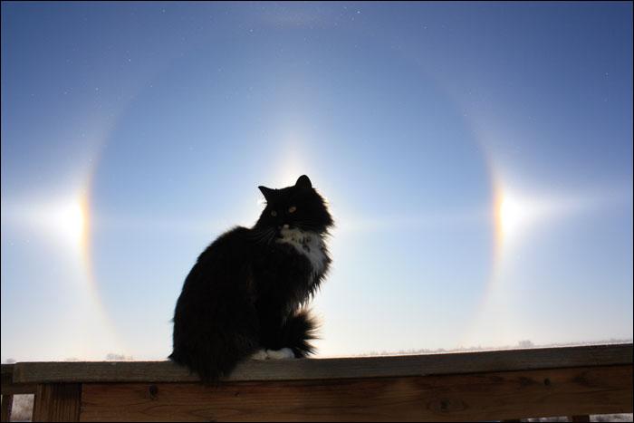Явления природы : sun dogs