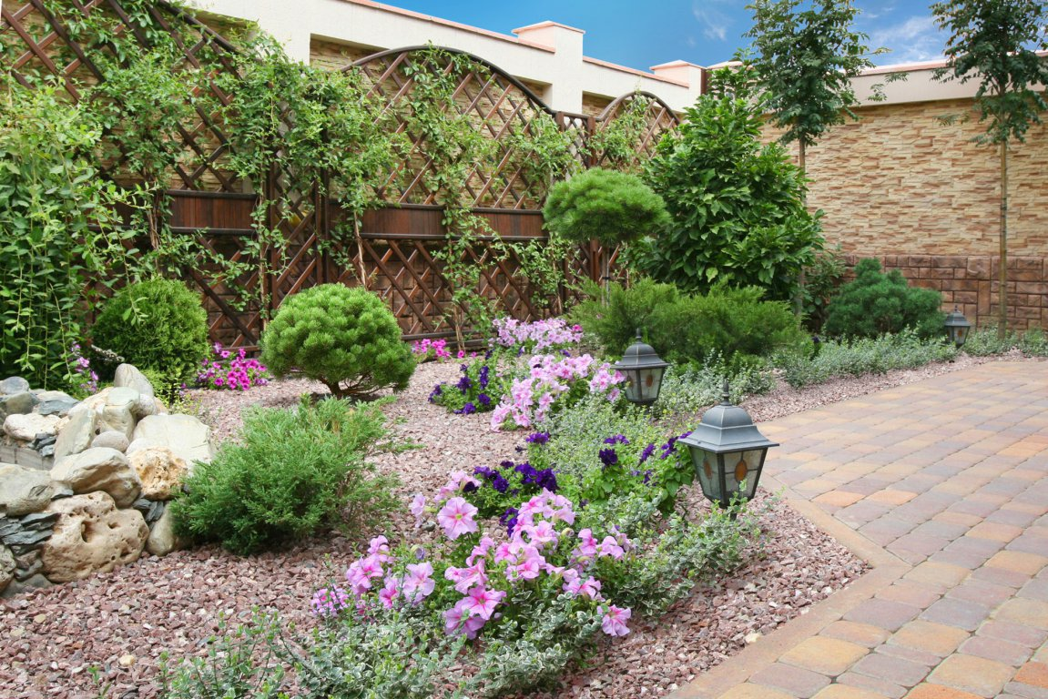 Зелёный оазис у дома (1)