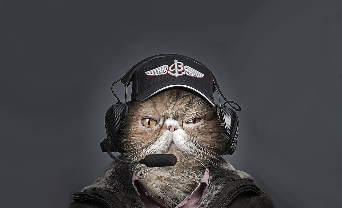 Человек кот фото
