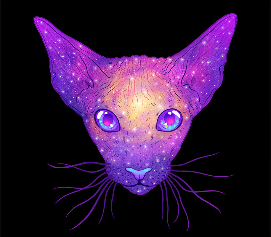 Космический кот (1)