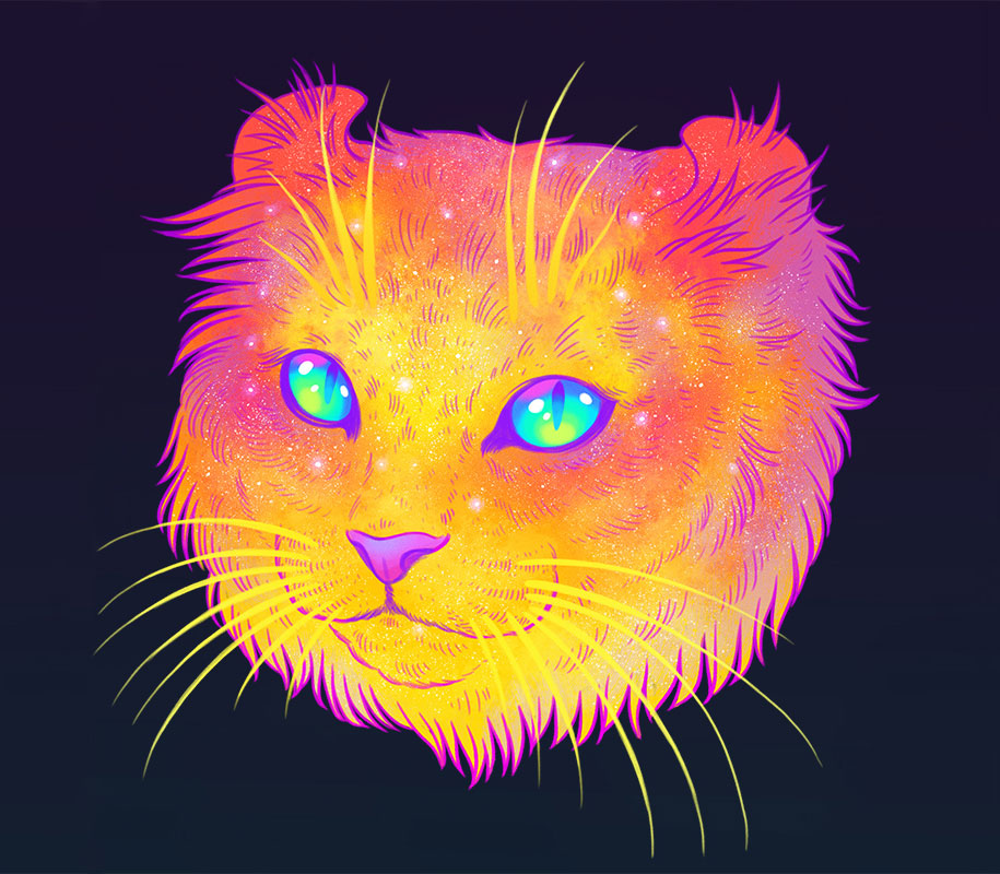 Космический кот (2)