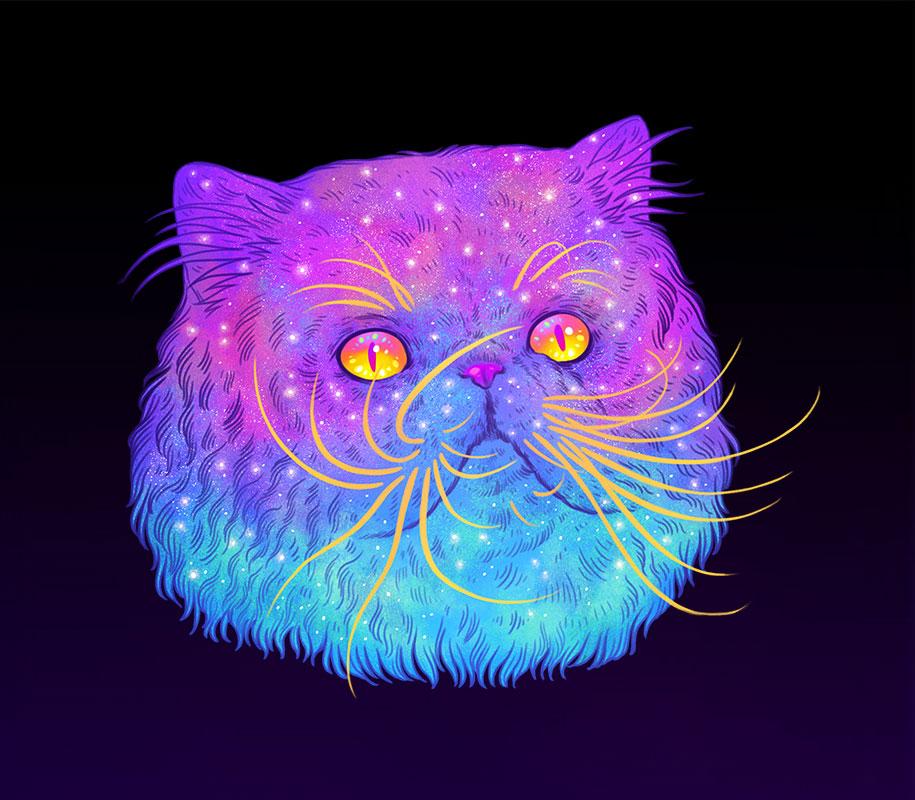 Космический кот (8)
